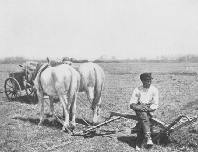 v1973.01.05 c farming